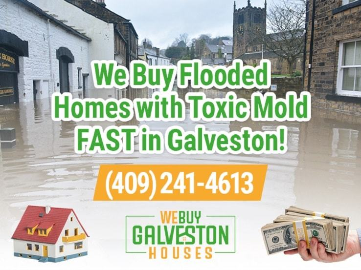 galveston water damage and mold